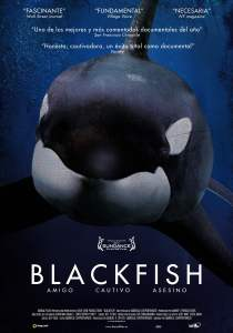 images-materiales-Cartel-BLACKFISH-14MB